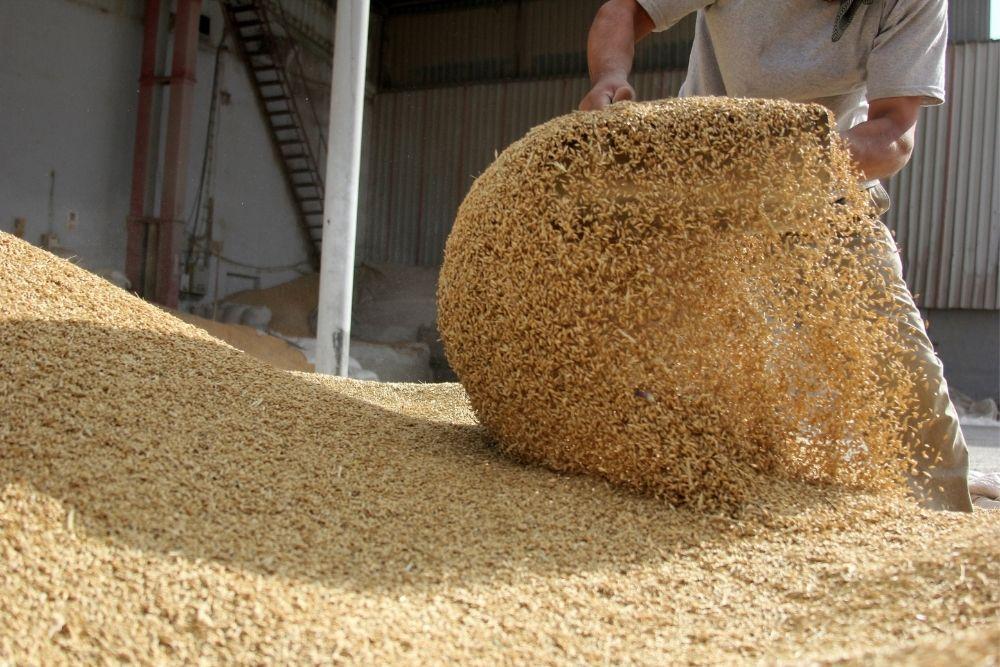 Wheat's Power Move