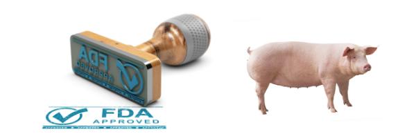 FDA Stamps 'APPROVED' on GMO Pork