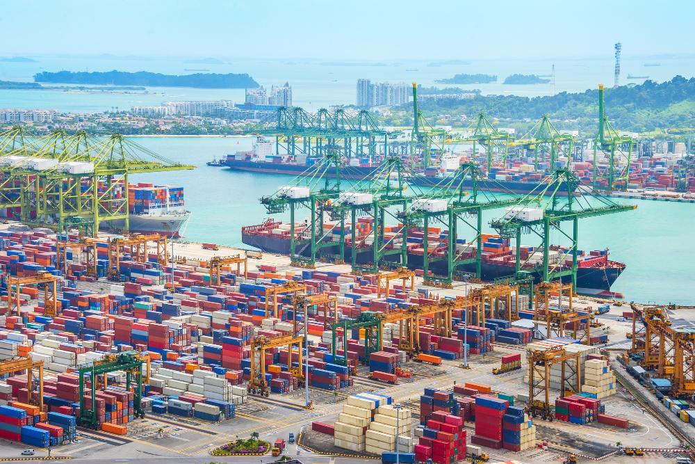 Port Probz: A Soy-Sugar Standoff