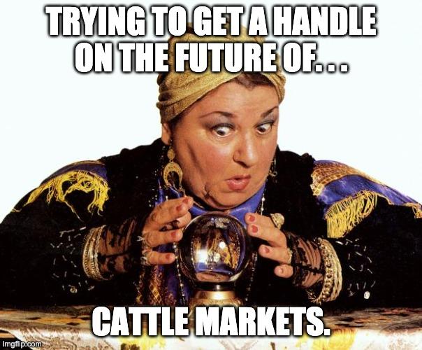 #CattleCon Crystal Ball